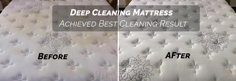 Professional Mattress Cleaning Dropmore