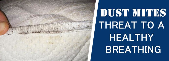 Dust Mites Mattress Cleaner