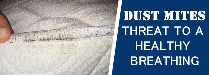 Dust Mites Mattress Cleaner
