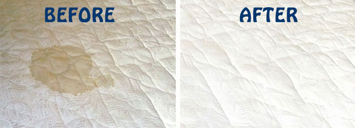 Mattress Stain Removal Services North Branch