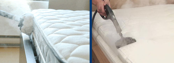 Steam Mattress Cleaning Charleston