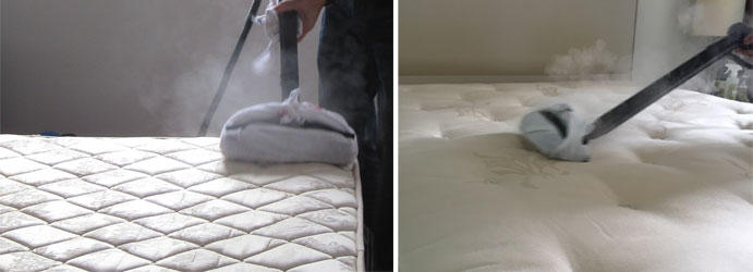 Amazing Mattress Steam Cleaning Services