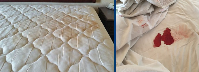 Quality Mattress Cleaning Services Melbourne