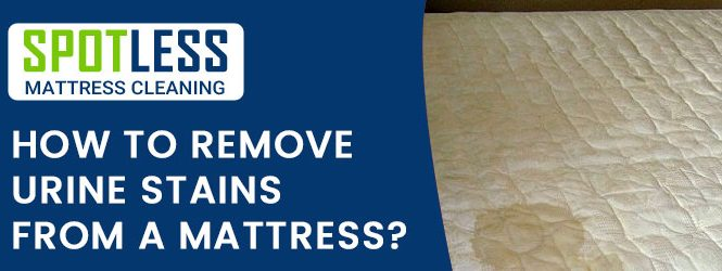 Remove Urine Stains From Mattress