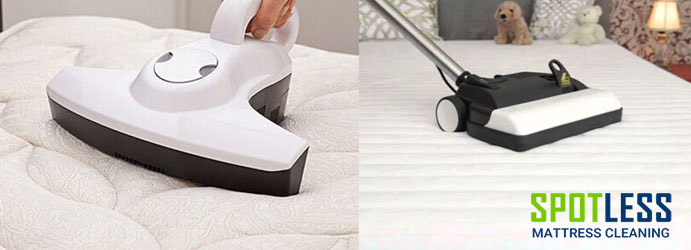 Mattress Sanitizing Carrajung Lower