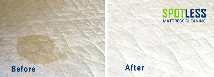 Mattress Urine Stain Removal Walkerville