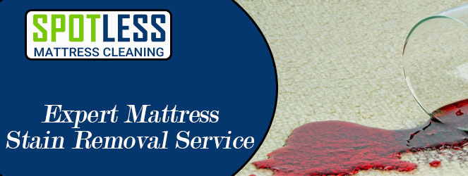 Expert Mattress Stain Removal Service