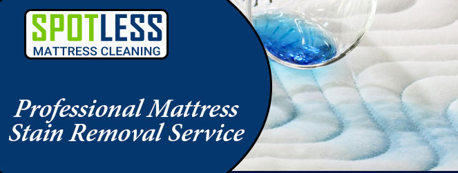 Professional Mattress Stain Removal Service