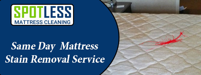 Same Day Mattress Stain Removal Service