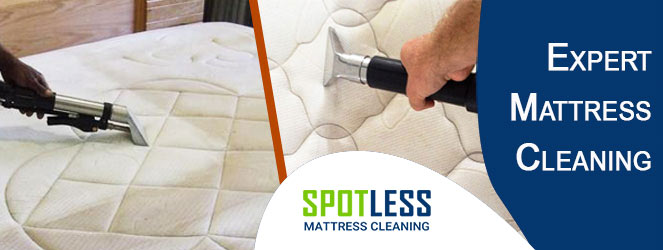 Expert Mattress Cleaning